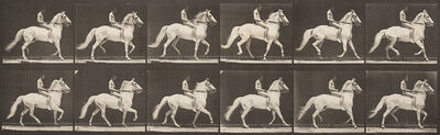 Eadweard Muybridge, 'Animal Locomotion, Plate 590', 1887