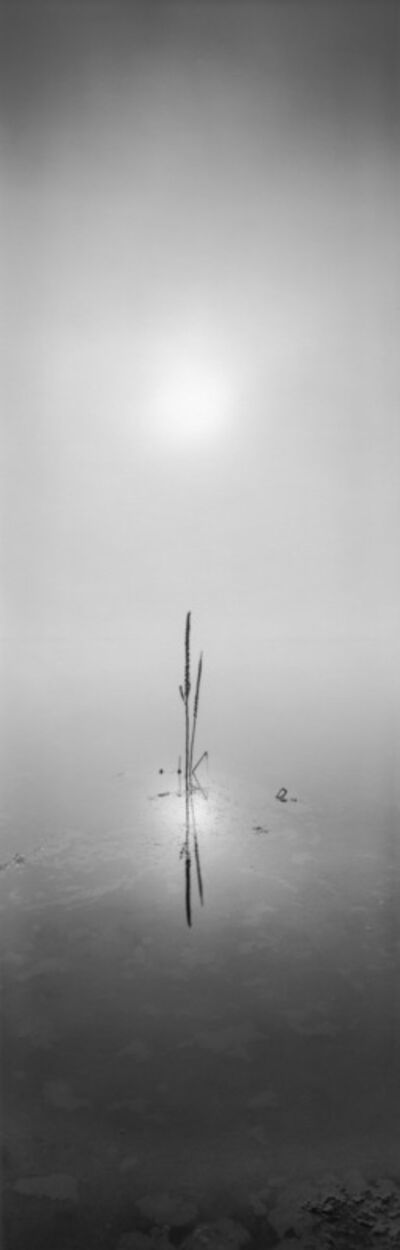 David H. Gibson, 'Sunrise, August 28, 2008, 7:40 AM, Eagle Nest Lake, New Mexico', 2008