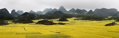 Edward Burtynsky, 'Canola Fields #2, Luoping, Yunnan Province, China', 2011