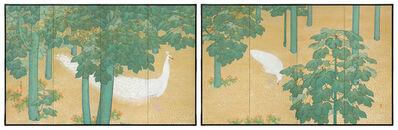 Itō Kinsen, 'Folding Screen, White Peacocks and Fatsia (T-4432)', ca. 1915