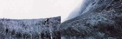 He Yunchang 何云昌, 'Move the Mountain', 1999