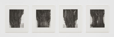 Robert Adams (b.1937), 'Harney County, Oregon', 2005