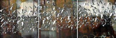 Sergio Cerchi, '(ATH) Volo di uccelli bianchi'