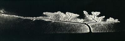 William Garnett, 'Reflection of the Sun on Dendritic Flow, San Francisco Bay, California', 1963-probably printed in the 1979