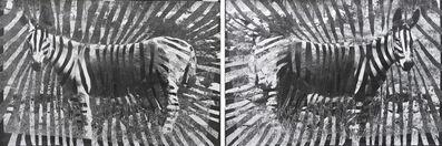 Shannon Bool, 'Gaza Zebras', 2012