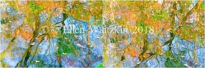 Ellen Waitzkin, 'Reflections'