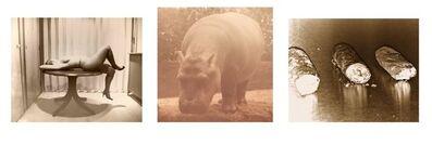 Paul Kooiker, 'Nude Animal Cigar (06)', 2014
