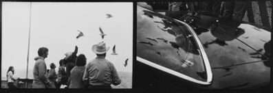 Eve Sonneman, 'Gulf Gulls, Houston, Texas', 1975