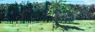 John Borden Evans, 'Apple Tree Diptych', 2017