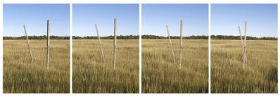 Matthew Jensen, 'Walking Sticks'