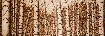 Paul Chojnowski, 'Birches', 2018