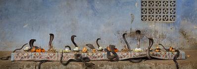 Claire Rosen, 'The Cobra Feast', 2016
