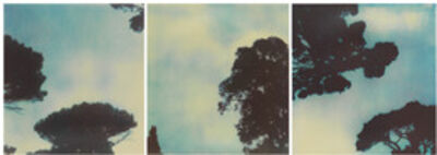 Cy Twombly, 'Trees', 1994