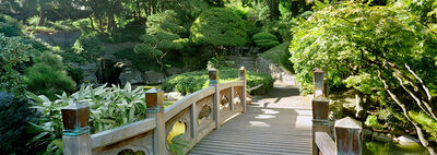 Andrew Prokos, 'Japanese Garden Bridge, Brooklyn', 2007