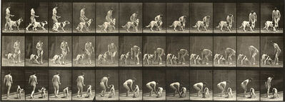 Eadweard Muybridge, 'Plate 449. Feeding a dog.', 1887