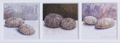 Robert Preston, 'Marine fossils', 2009