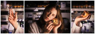 Margot Quan Knight, 'Lab (triptych)', 2005