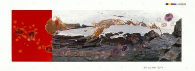 Helen Chadwick, 'Viral Landscape No. 3', 1988-89