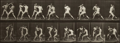 Eadweard Muybridge, 'Boxing, open hand.', 1887