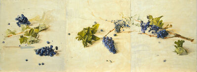 Leticia Feduchi, 'Triptych with grapes', 2011