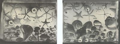 Gábor Kerekes, 'Shell (double)', 1996