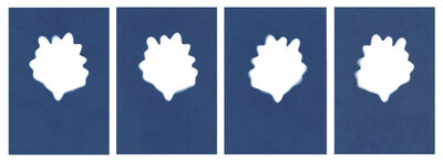 Sarah Irvin, 'Cyanotype Archive: Individual Lettuce Leaves', 2020