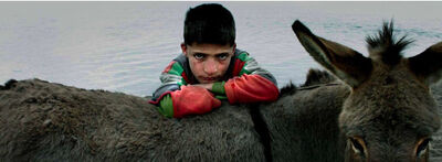 Nuri Bilge Ceylan, 'Boy with the Donkey, Erciş', 2004