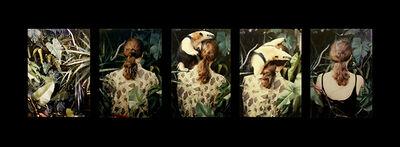 Anna Bella Geiger, 'Camouflage', 1980-2015