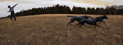 Tom Chambers, 'Fetch', 2008