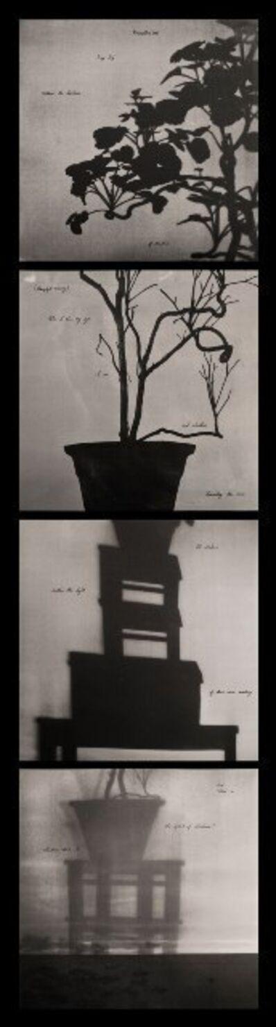 Neha Choksi, 'Photosyntax', 2007/2012