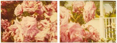 Stefanie Schneider, 'Rosegarden #01, diptych', 2004