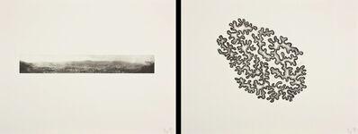 Richard Deacon, 'Borderline - Caracas (diptych)', 2011