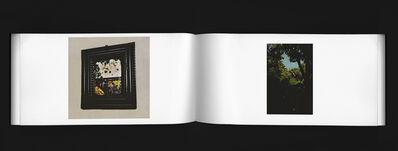 Hans von Schantz, 'Volume #5', 2019