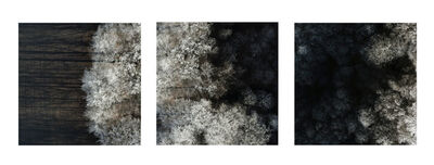 Kacper Kowalski, 'Untitled (Winter Trees Triptych)', 2017-2018