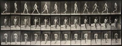 Eadweard Muybridge, 'Animal Locomotion: Plate 11 (Nude Man Striding)', 1887