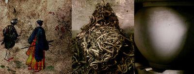 Catherine Poncin, '#001, de la série La boîte de Pandore', 2008