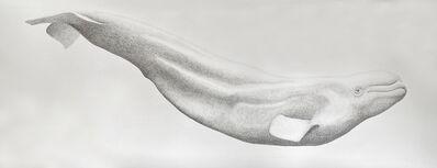 Hannah Hanlon, 'Beluga', 2020