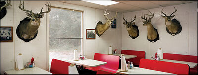 Jerry Siegel, 'J&R's, Deer Heads, Perry County, AL', 2002