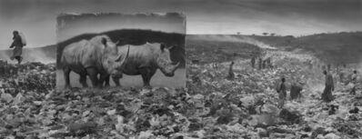 Nick Brandt, 'Wasteland with Rhinos', 2014