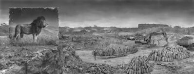 Nick Brandt, ''Quarry with Lion' Kenya', 2014