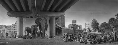 Nick Brandt, 'Underpass With Elephants & Glue-Sniffing Children', 2015