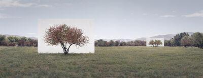 Myoung Ho Lee, 'Tree...#7', 2014