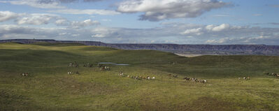 Andrew Moore, 'Badland Ponies, Shannon County, South Dakota', 2014