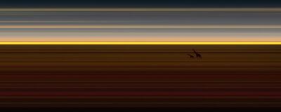 Jay Mark Johnson, 'Masai Mara #138', 2014