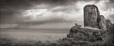 Nick Brandt, 'Lion with Monolith, Serengeti, 2008'