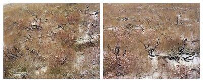 Laura McPhee, 'Late Fall, Burnt Sage Brush Diptych AP'