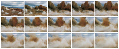 Naoya Hatakeyama, 'A bird / Blast', 2006