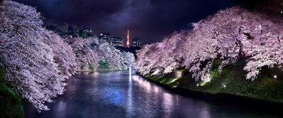David Drebin, 'Pink Nights Tokyo', 2015