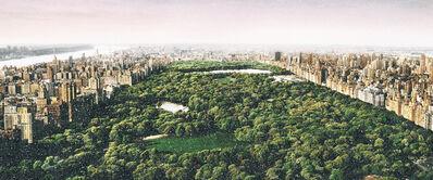 David Drebin, 'David Drebin, Dreams of Central Park (with diamond dust)', 2020