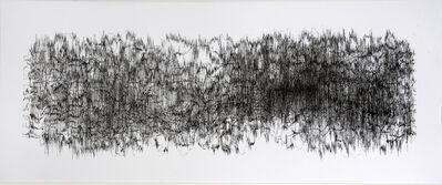 Gustavo Díaz, 'Fourier peina bucles extraños III', 2008